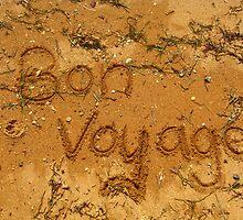 Bon Voyage by gracelouise