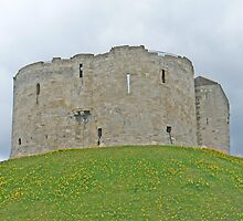 Daffodils, A Blue Sky And Clifford's Tower by AARDVARK
