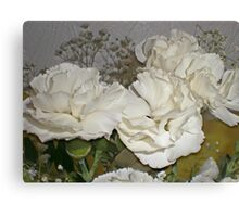 white mini carnations Canvas Print