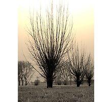 Winter mood Photographic Print