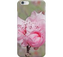 Petite Pink Blossoms iPhone Case/Skin