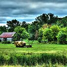 Country Landscape by Johnny Furlotte