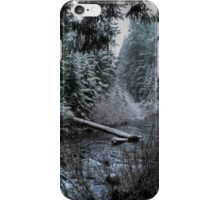 A Winters Dream iPhone Case/Skin