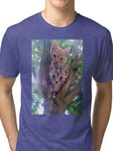 Kittens on a tree. Tri-blend T-Shirt