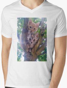 Kittens on a tree. Mens V-Neck T-Shirt