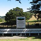Longest Maori Place Name in the World by niggle