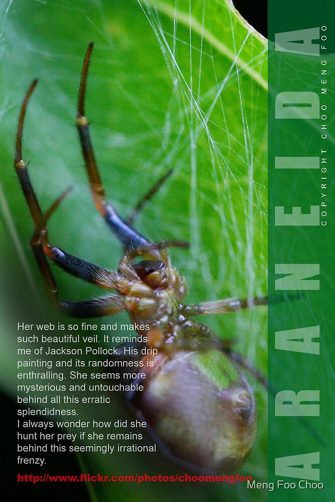 Spider 'man'  by Meng Foo Choo