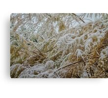 Snowfall -2 Canvas Print