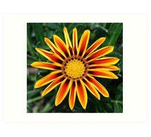 Bright Flower Art Print