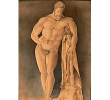 Drawing of Hercules Farnese Uffizi Photographic Print