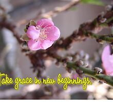 Take Grace in New Beginnings, (233 Views as of 5-12-2011) by leih2008