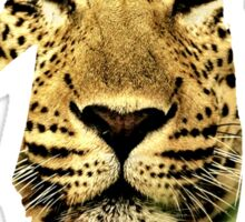 VSVP Leopard Sticker