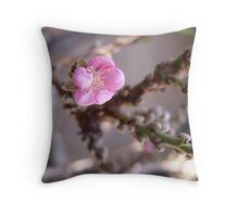 """Peach trees are blooming in So. California!  """"We're in the pink"""" LOVES IT! Throw Pillow"""