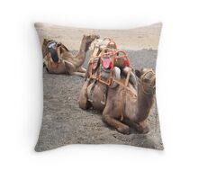 Camels in Lanzarote Throw Pillow
