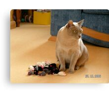 what mice Canvas Print