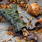 Garden debris by westie71