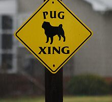 Pug Crossing by madman4