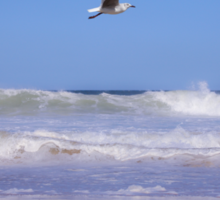 Seagulls and soft waves... Sticker