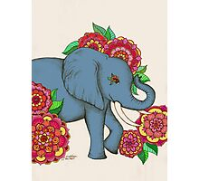 Little Blue Elephant in her secret garden Photographic Print