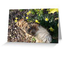 Bugar  - Bloom Inspector Greeting Card