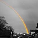 Rainbow by Rowan