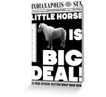 Little horse is big deal. (white) Greeting Card