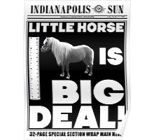 Little horse is big deal. (white) Poster