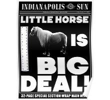 Little horse is big deal. (black) Poster