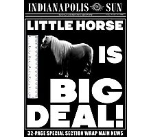 Little horse is big deal. (black) Photographic Print