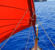 Caraway Sailing by Angus Beare