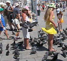 A Birds Life by TimoFyjames