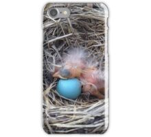 Newborn Robin iPhone Case/Skin
