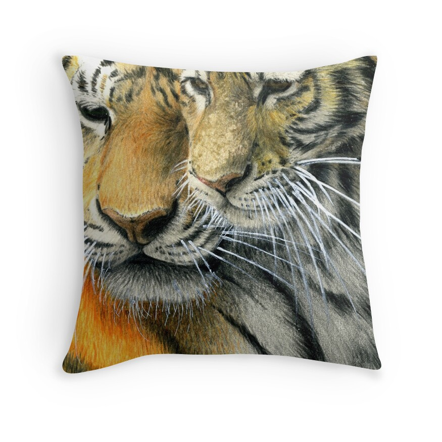 Milli Home Decorative Pillows :