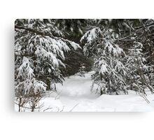 Enough Snow Yet? :) Canvas Print