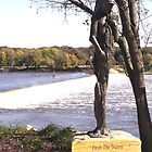 Statue by Rock River Dam by Tanya Bowers