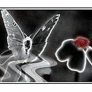 Spirit Flight by glink