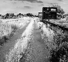 Infra Red of Old Abandoned Train Cars by Shane Shaw