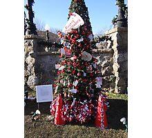 Go Chucks Christmas Tree Photographic Print