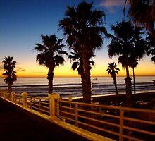 Beach Sunset by nicholas  mann