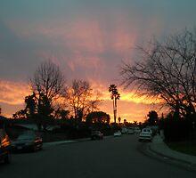 San Marcos Night by nicholas  mann