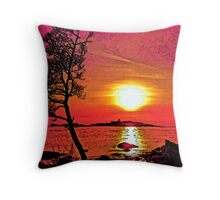 Al Fresco Throw Pillow