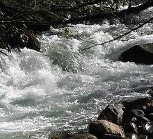 raging river by Paul Greenstock