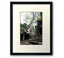 Reclamation Framed Print