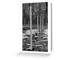 spring will soon be here Greeting Card