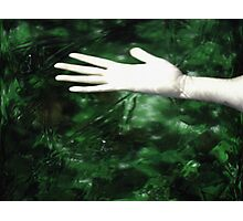 Cause of Death was determined to be Drowning in Stagnation Photographic Print
