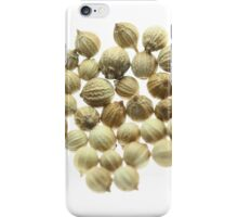Coriander seeds iPhone Case/Skin