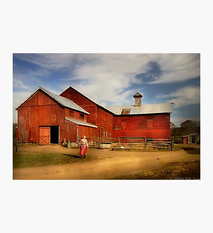 Going back to the farm Photographic Print