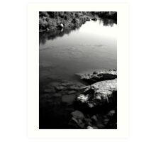 American River Folsom  Art Print