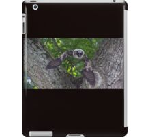 In Flight iPad Case/Skin