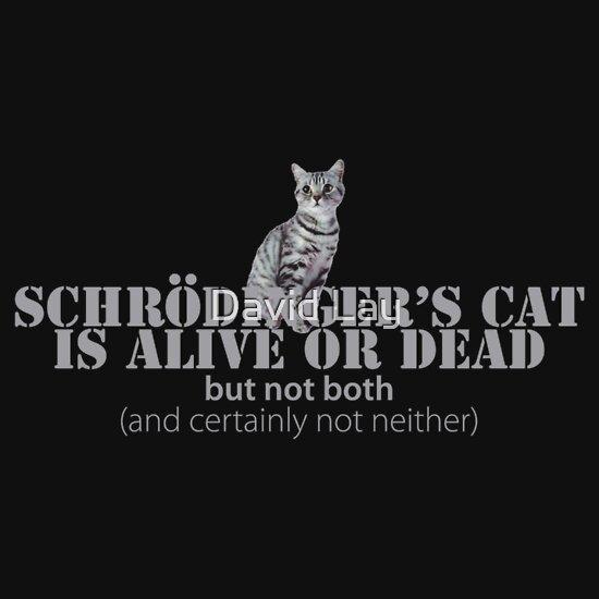 TShirtGifter presents: Schrdinger's Cat Is Alive Or Dead